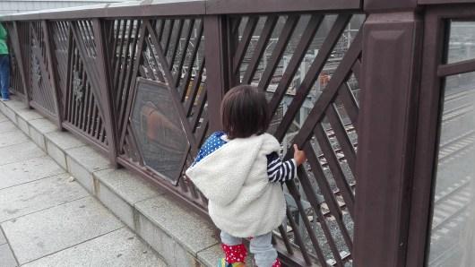 日暮里 電車 下御隠殿坂橋