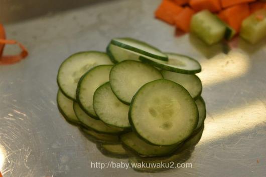 ショップジャパン ないサーダイサーマジックキューブ 野菜をカット