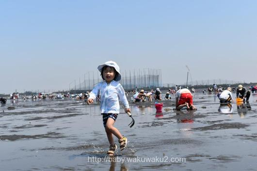 久津間海岸潮干狩り ブログ 3歳 子供 潮見表