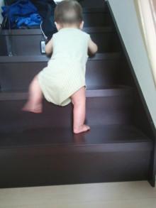 8ヶ月 階段