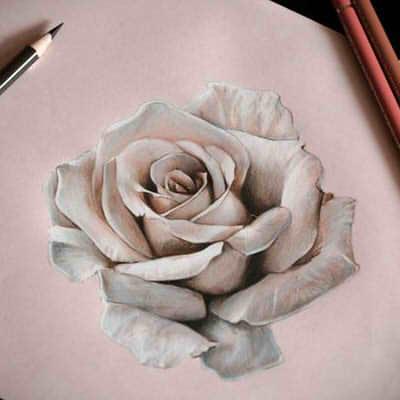 как рисовать цветы как нарисовать цветок карандашом