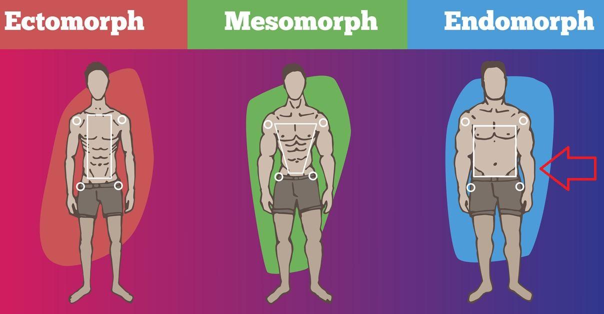 pierderea de grăsimi pentru mezomorf feminin