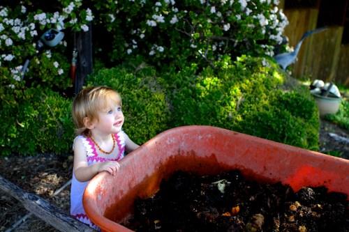 How to compost diapers on BabyBirdsFarm.com