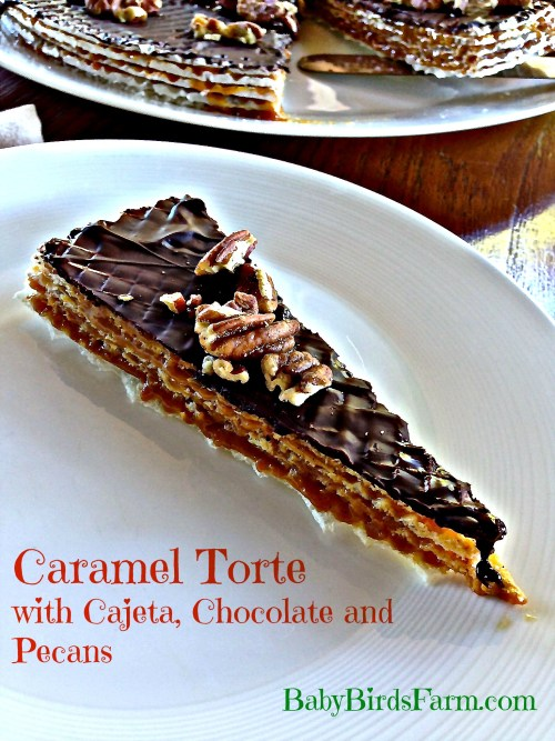 Caramel Torte with Cajeta, Chocolate and Pecans