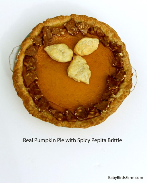 Real Pumpkin Pie with Spicy Pepita Brittle