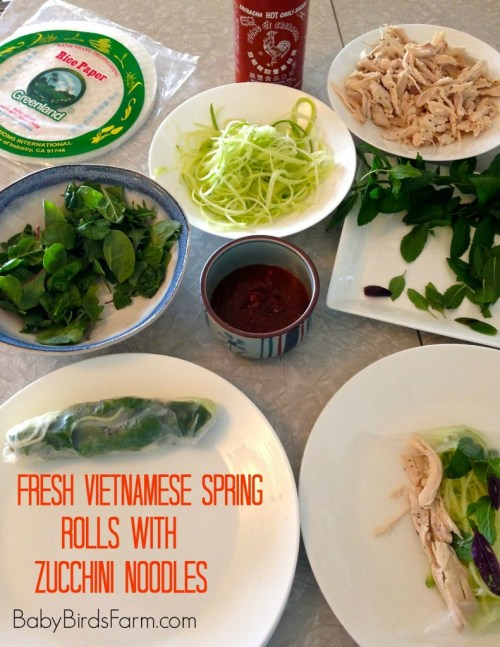 fresh vietnamese spring rolls with zucchini noodles