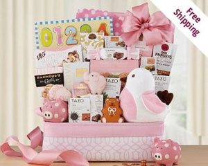 welcome-home-baby-girl-gift-basket