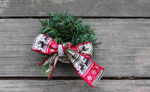 DIY-Gift-bow-adornment-babycastanonboard.com-pine-complete
