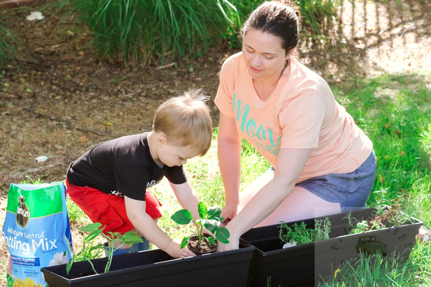 Planting with toddlers by popular DC mommy blogger Baby Castan on Board