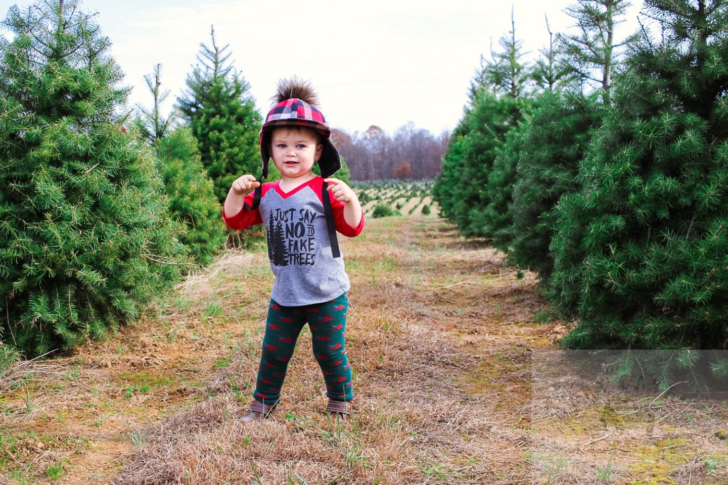 The Top 3 Christmas Tree Farms in Washington DC to Visit featured by top Washington DC blog, Baby Castan on Board: picture of a toddler at the Moose Apple Christmas tree farm