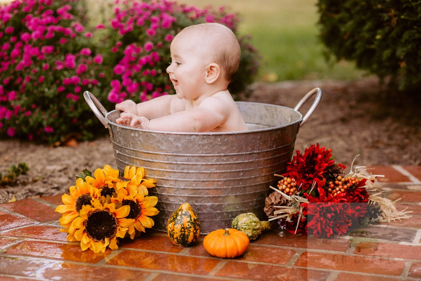 Fall Baby Photo Shoot Ideas featured by top US mommy blog, Baby Castan on Board: image of a cute baby in a pumpkin milk bath