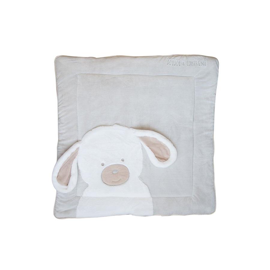 Tapidou – Chien – 100×100 cm