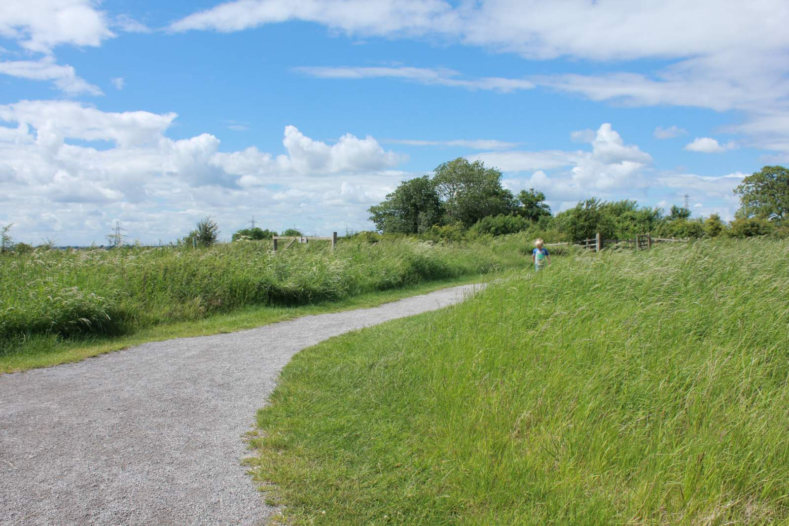 walking through grassland at RSPB Saltholme