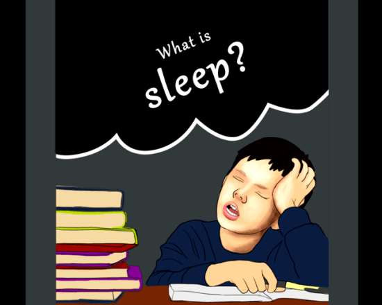 Scientists Compete at Explaining Sleep!