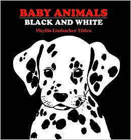 Book cover of Baby Animals Black and White