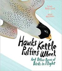 Cover of Hawks Kettle by Griek