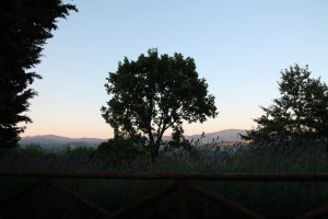 Yoga in Tuscany with a Toddler
