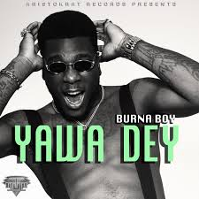 Burna Boy - Yawa Dey [Official Video]+ Video Download