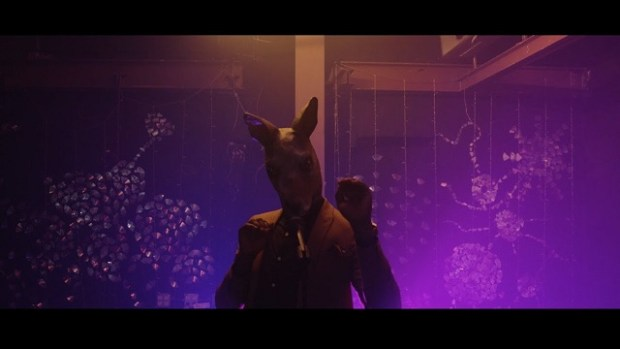 kelvin boj kangaroo video