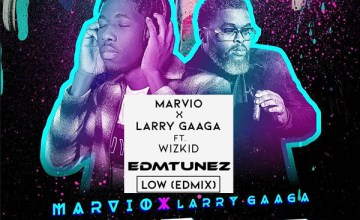 larry gaaga low edmix