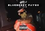 Nasty C Blueberry Faygo