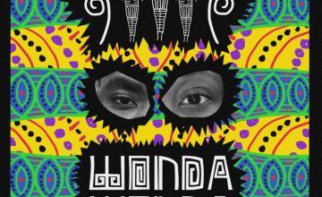 Lady Donli Wonda Wonda ft DarkoVibes