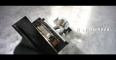 Harmonize Nishapona video