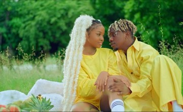 Rayvanny Number One ft Zuchu video