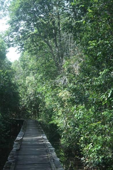 Awal trekking