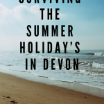 A Summer Holiday in Devon