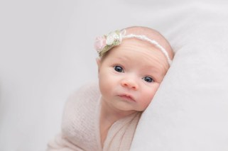 NewbornMiniHudsonOhioPhotographer030