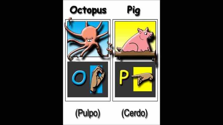 Alphabet Animals At The Zoo