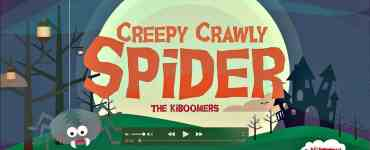 Creepy Crawly Spider