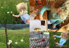 Making nature books and nature mobiles - 30 Days Wild