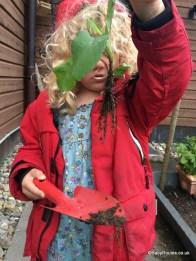 Examining roots - 30 Days Wild