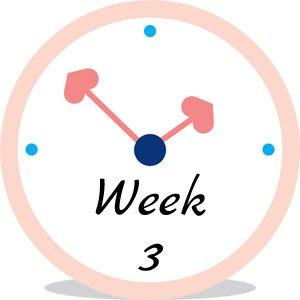 Zwangerschap week 3