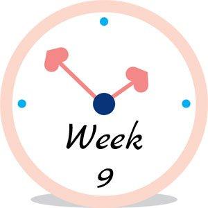 Zwangerschap week 9