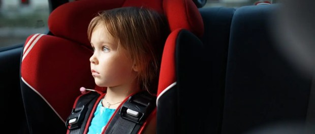 buyers guide to toddler car seats