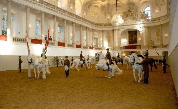 escuela de equitación de viena