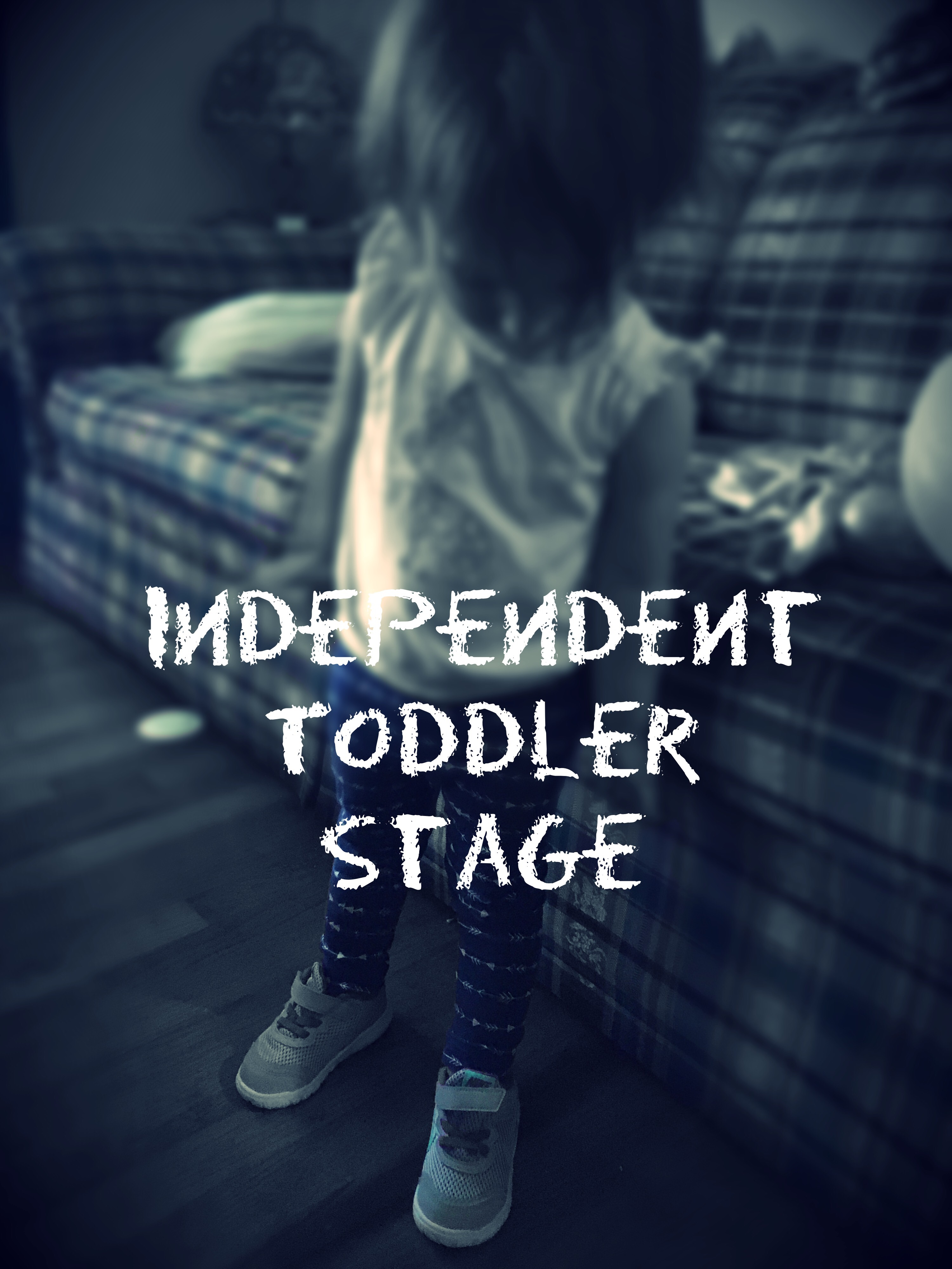 Independent Toddler Stage