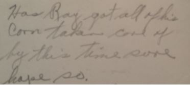 Has Ray Got his Corn in Excerpt from Navy World War 2 Letter