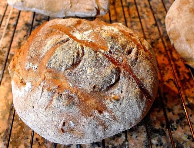 bread-830455_1280