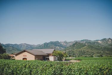 Madrigal-Vineyards-181