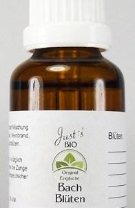 individuelle Bachblüten Mischung 30 ml