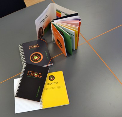 """lyk-z """"lille hjelper"""" verktøy for FROG veiledere / tools for FROG supervisors"""