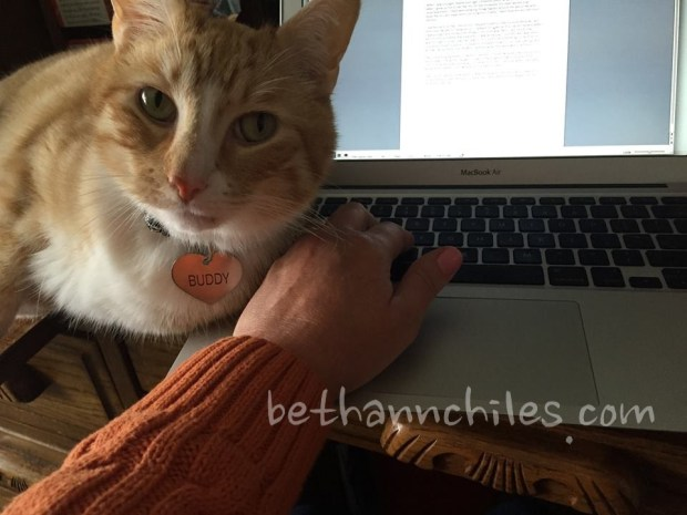 Buddy is always helping me with blog posts and writing.