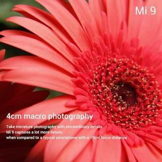 - Xiaomi Mi 9 Macro Photography - Xiaomi เปิดตัว Mi9 สเปกจัดเต็ม กล้อง 3 ตัวคะแนน DxOMark 107 ในราคาเอื้อมถึง