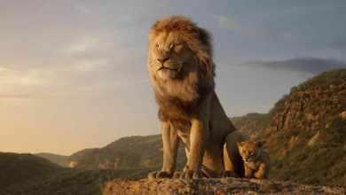 รีวิวชุดแรกของ Lion King มาแล้ว นักวิจารณ์ไม่ปลื้มเพราะสมจริงเกินจนไร้อารมณ์ - รีวิวชุดแรกของ Lion King มาแล้ว นักวิจารณ์ไม่ปลื้มเพราะสมจริงเกินจนไร้อารมณ์