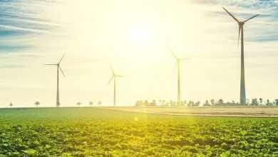 - RICOH ประกาศใช้พลังงานไฟฟ้าแบบทดแทน 100% สำหรับการประกอบเครื่องพิมพ์