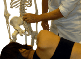 Chiropractic For Sciatica